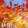2015/10/06楽しさ∞